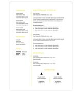 CV Elisa - geel 2