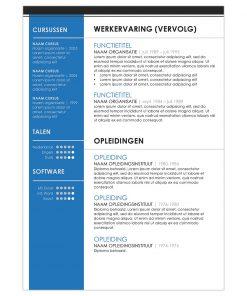 CV Johan - blauw 2