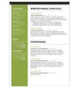 CV Johan - groen 2