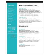 CV Johan - turquoise 1