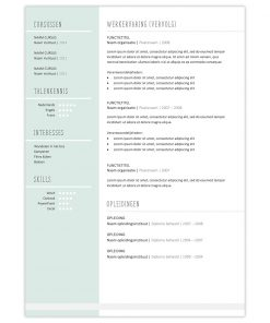CV Kira turquoise 2