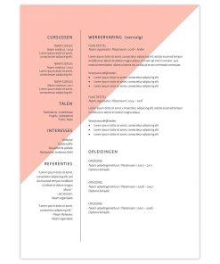 CV Lucas - roze 2