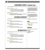CV Nora - geel 2