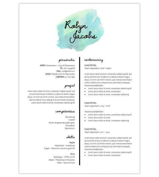 CV Robyn - turquoise 1