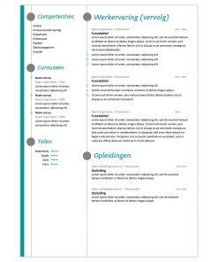 CV Thijs - turquoise 2