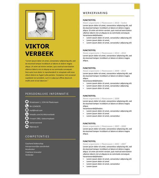 CV Viktor - geel 1