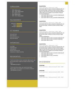 CV Viktor - geel 2