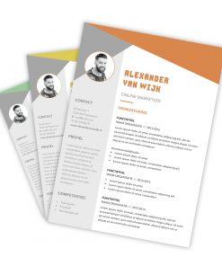 CV-template Alexander