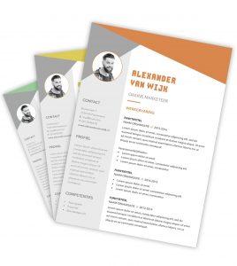 CV-template 'Alexander'