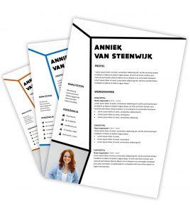 CV-template 'Anniek'