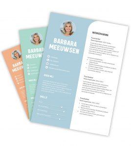 CV-template 'Barbara'