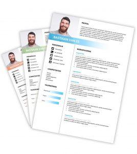 CV-template 'Bastiaan'