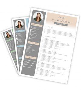 CV-template 'Chris'