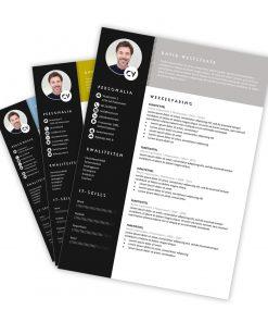 CV-template David
