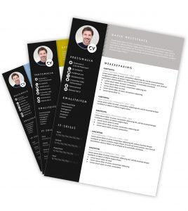 CV-template 'David'