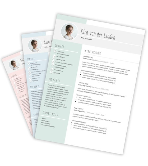 cv template download direct bij creatief cv nl