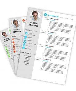 CV-template Olivier