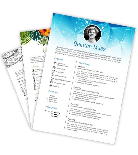 CV-template Quinten