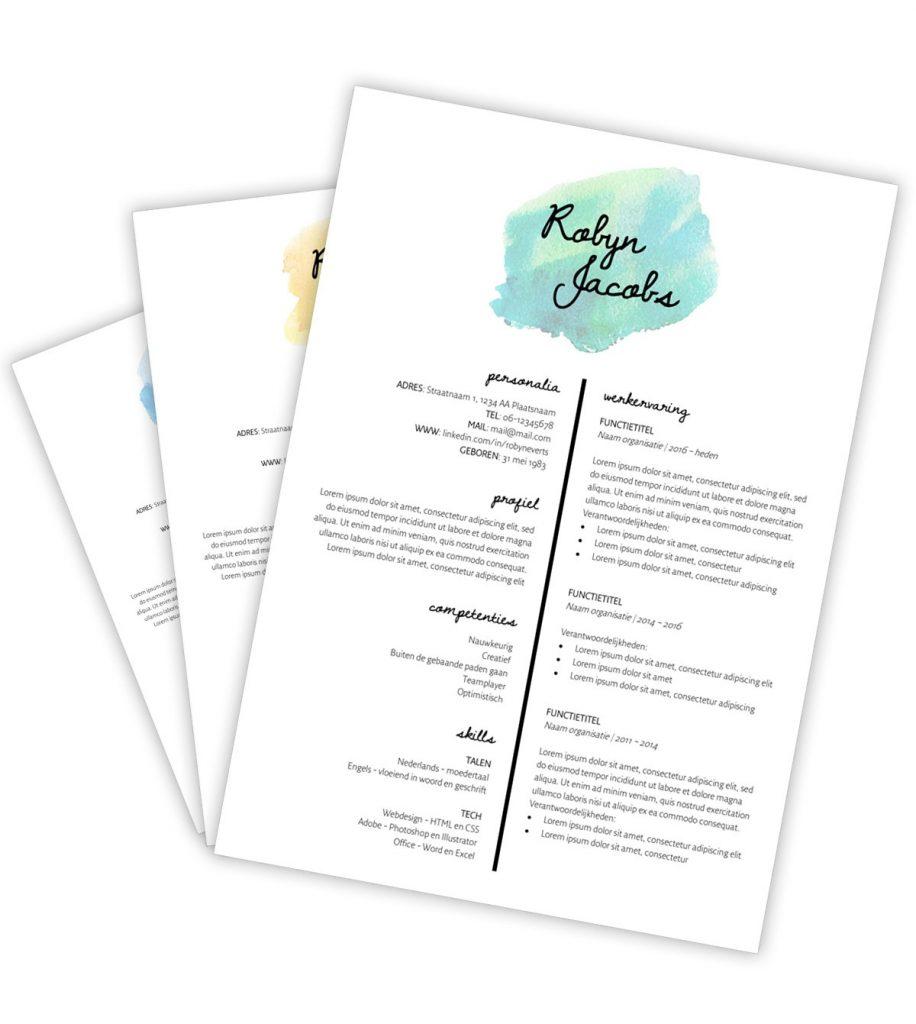 CV-template 'Robyn'