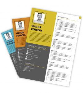 CV-template 'Viktor'