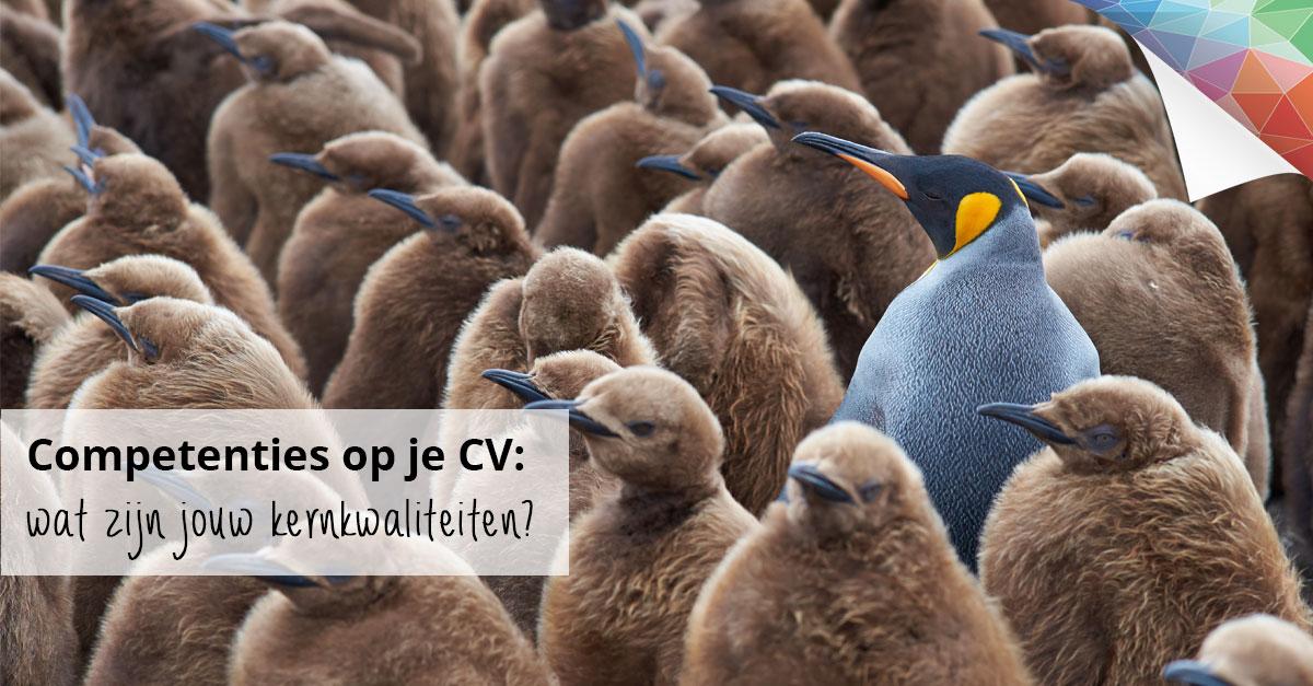 wat zijn competenties in een cv Competenties op je CV: een compleet overzicht   Creatief CV.nl